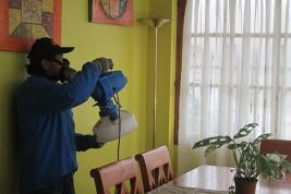 Control de Plagas - Servicios